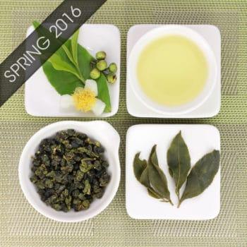 Dayuling High Mountain Oolong Tea Spring 2016
