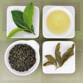 Organic Four Seasons Oolong Tea