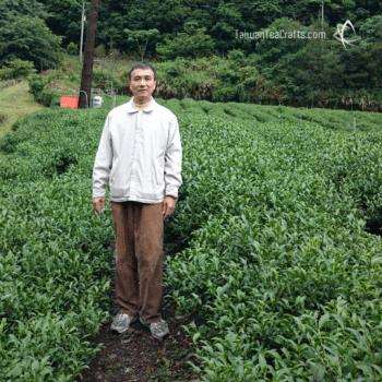 Organic Lishan Garden