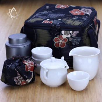 Elegant Easy Gaiwan, Pitcher, Cups and Tea Tin Set with Padded Square Tea Travel Tote Pack
