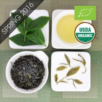 Organic Fragrant Jade Bi Luo Chun Style Green Tea with logo
