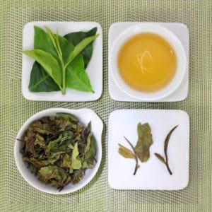 Red Jade White Tea 6I316